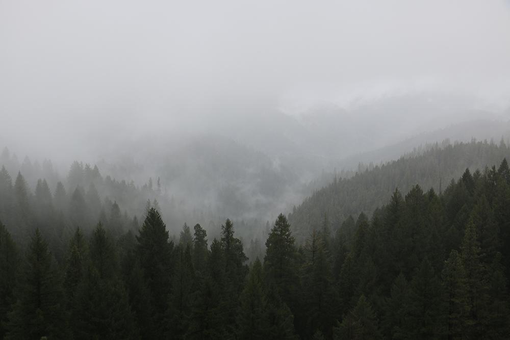 Reno Snow - Alternatives to I-80 and Highway 50
